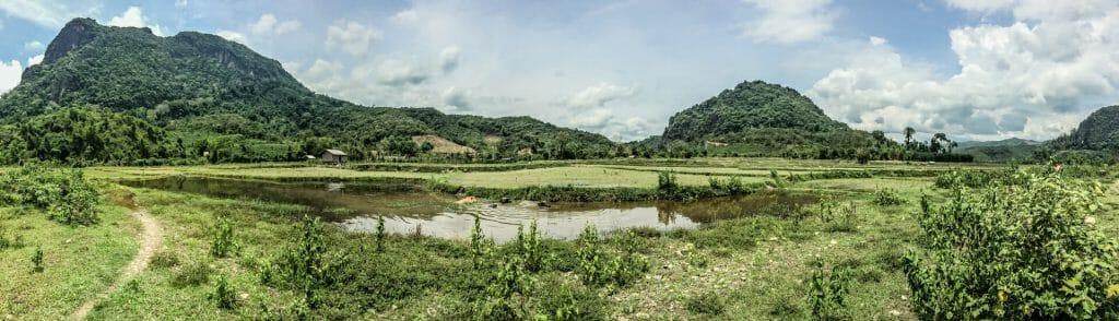 rizières laos