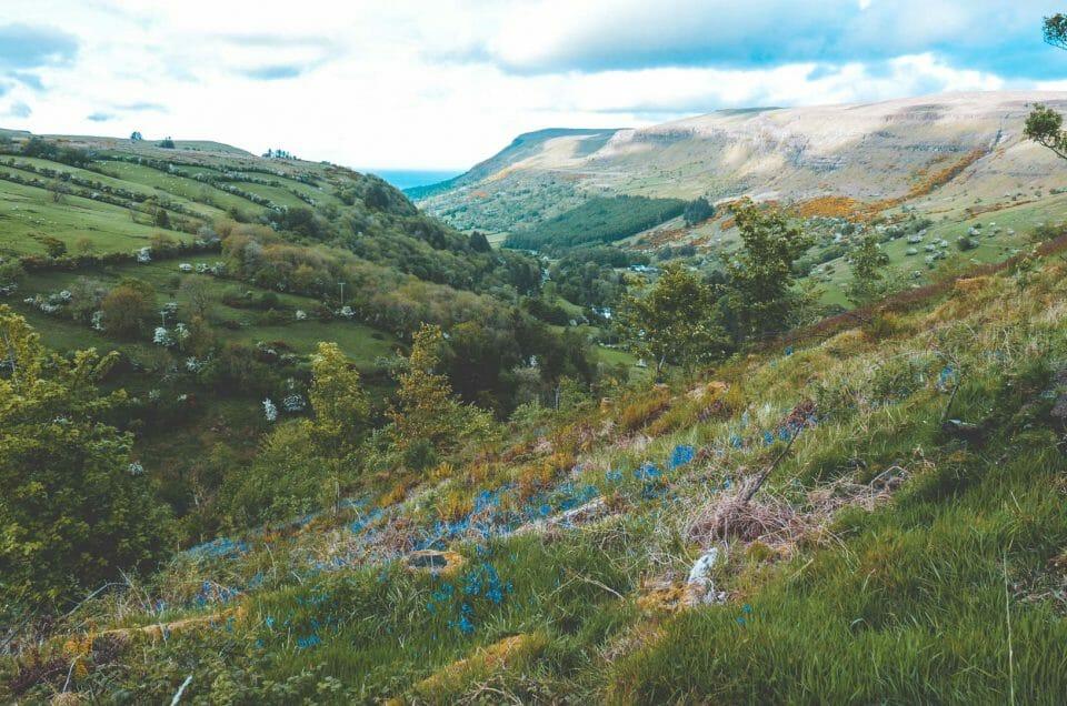Irlande du Nord : La Forêt de Glenariff entre contes et traditions