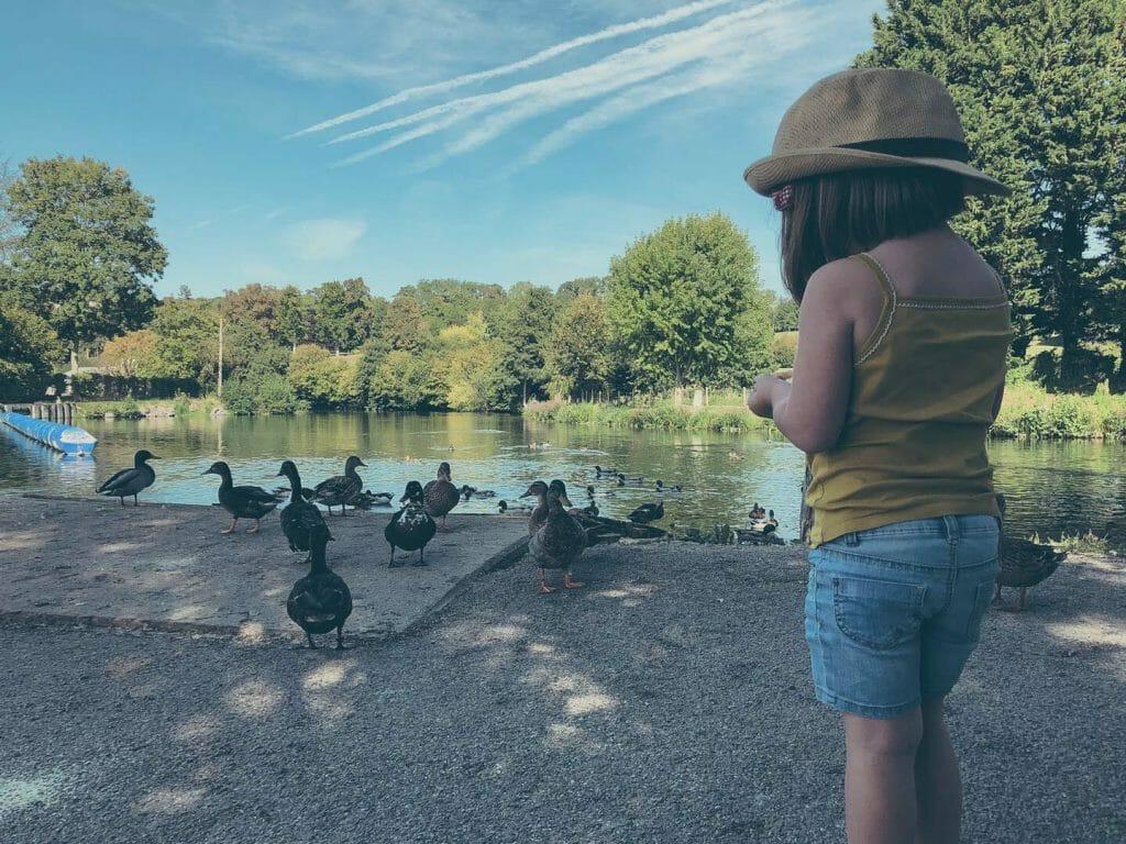 Long les canards