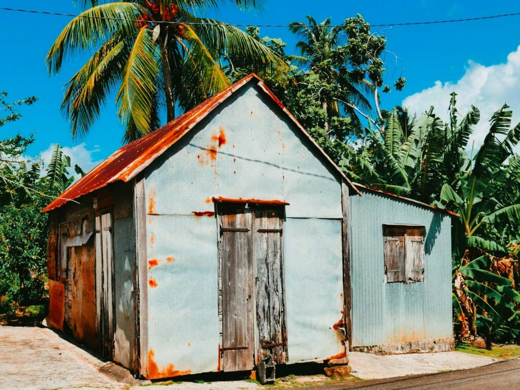 cabane palmier