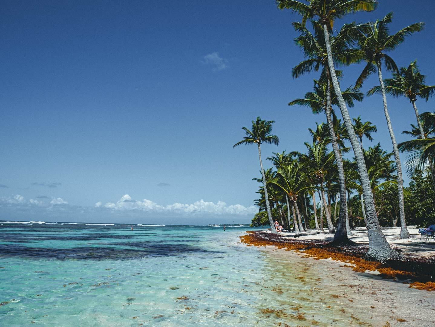 plage paradisiaque guadeloupe