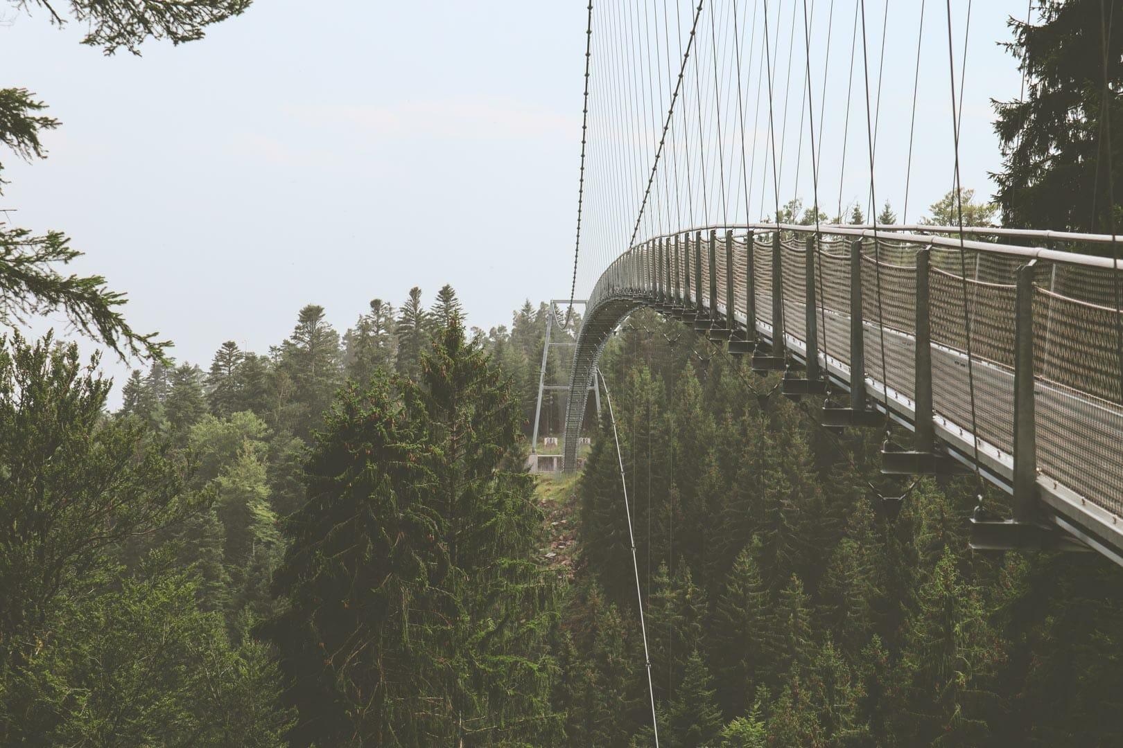 pont suspendu foret noire