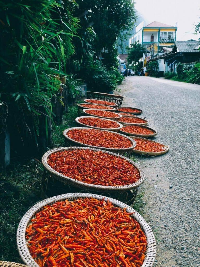 piment laos