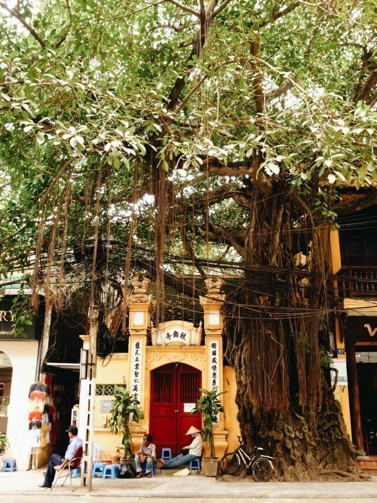 rue hanoi vietnam