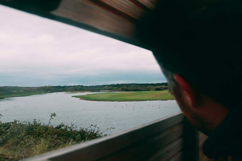 observation parc du marquenterre