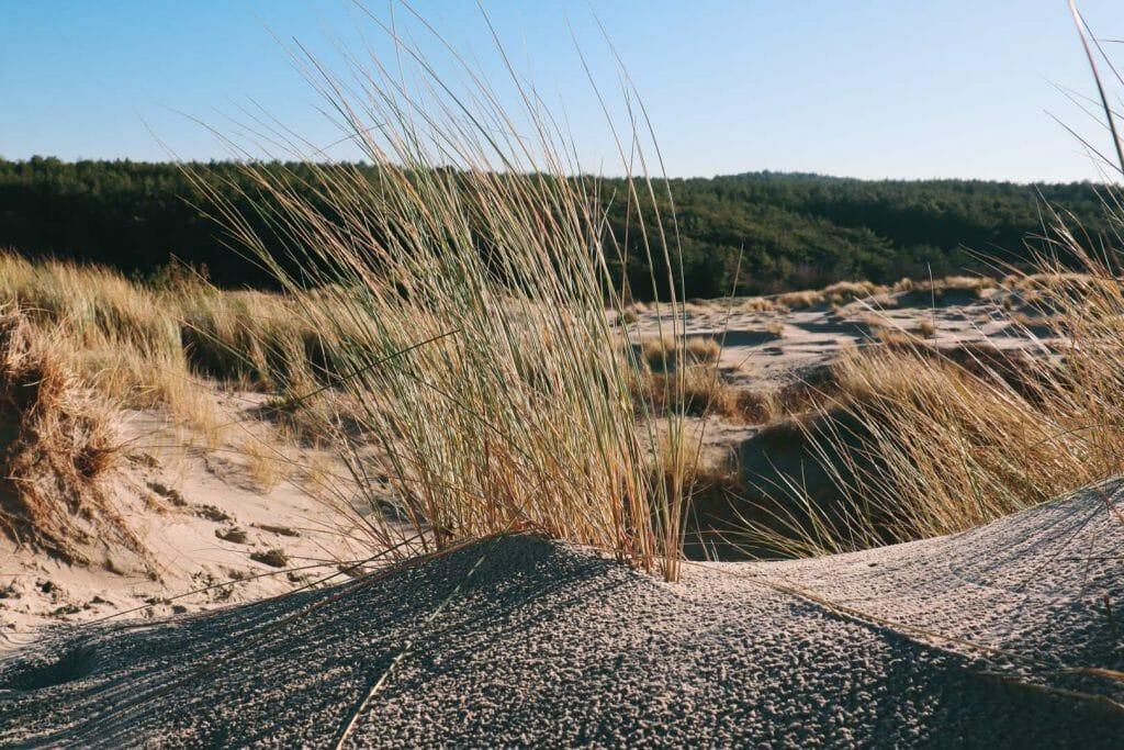 dune randonnée des crocs