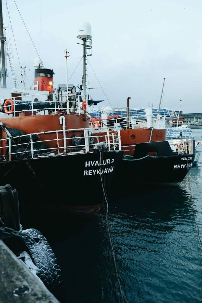 bateau port reykjavik