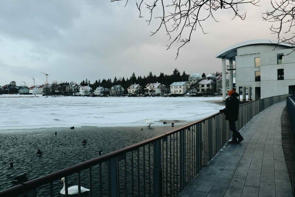 lac Tjörnin en hiver
