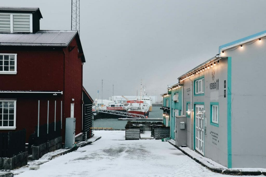 que faire reykjavik en hiver