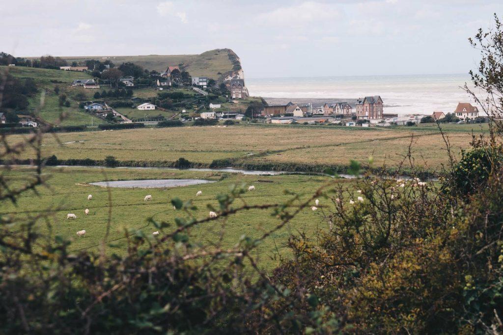 road trip cote albatre normandie