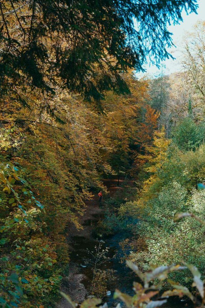 vallée du hérisson