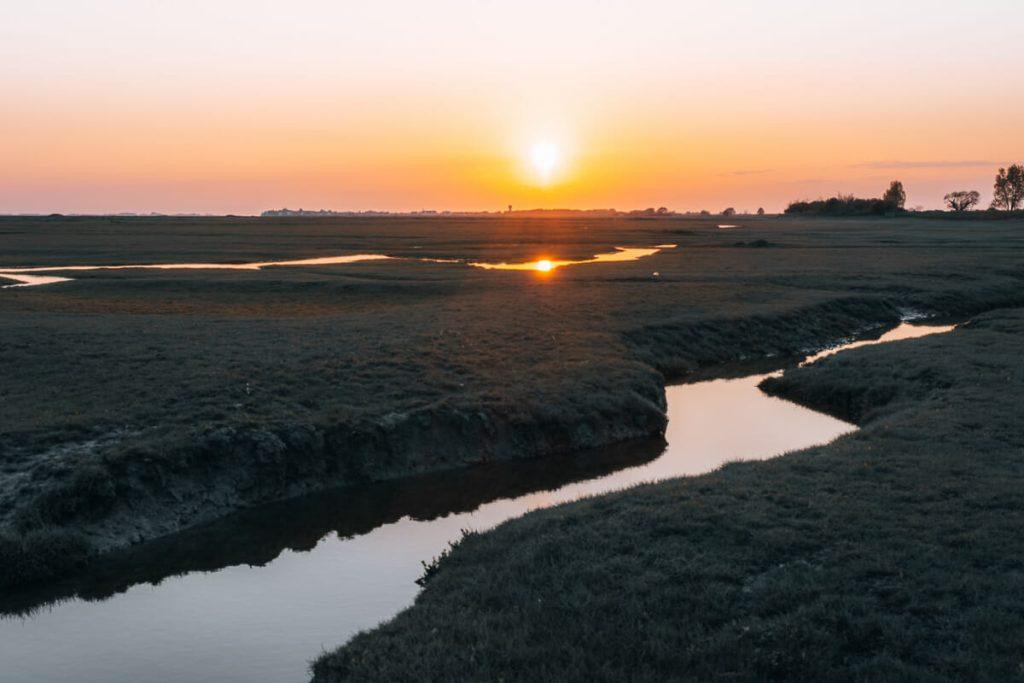 activités nature Baie de Somme